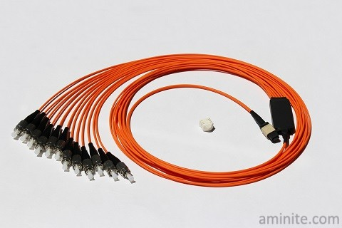 MPO Harness & Fanout Cable Assemblies1